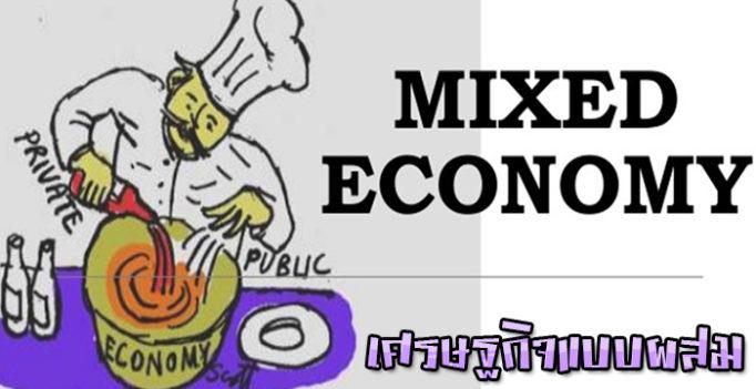 เศรษฐกิจแบบผสม